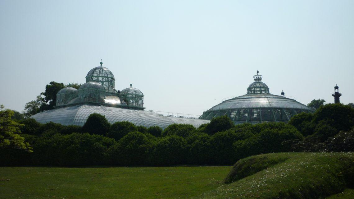 Visite des Serres Royales de Laeken